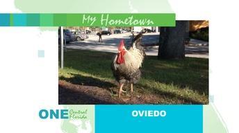 ONE Central Florida Short: Oviedo