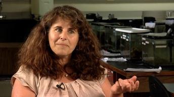 SciTech Short: Linda Walters
