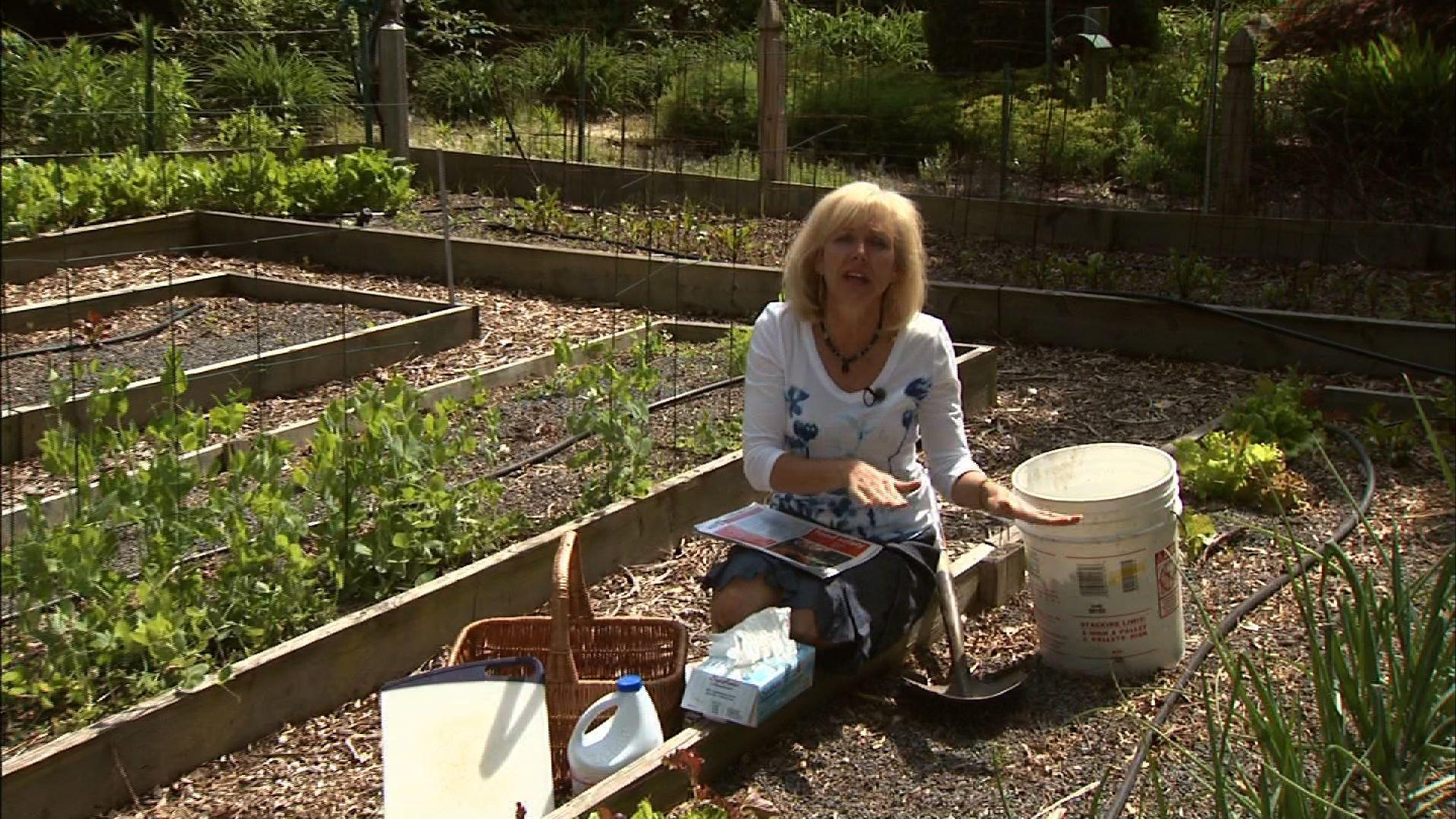 Food Safety for Backyard Gardeners image