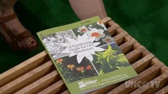 Best Gardening Guide