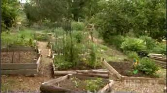 SEEDS Community Garden