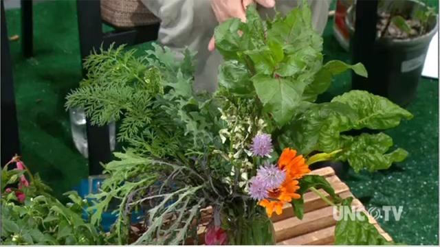 Growing Edible Bouquet image