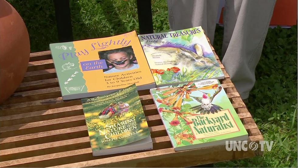 Teaching Kids Gardening image