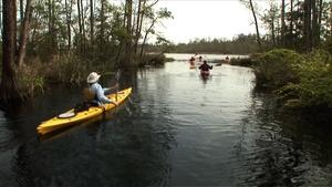 Coastal Kayak Touring Company