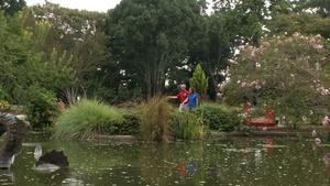 Bullington Gardens/New Hanover County Arboretum