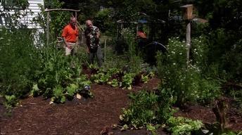 Sustainable Gardending