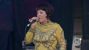 Shakori Hills Concert Series:  Elastic Bond