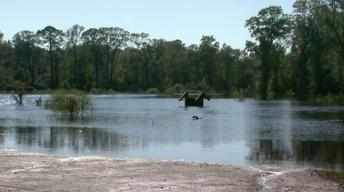 Grifton Flooding