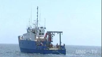 Coastwatch: Ocean Observing