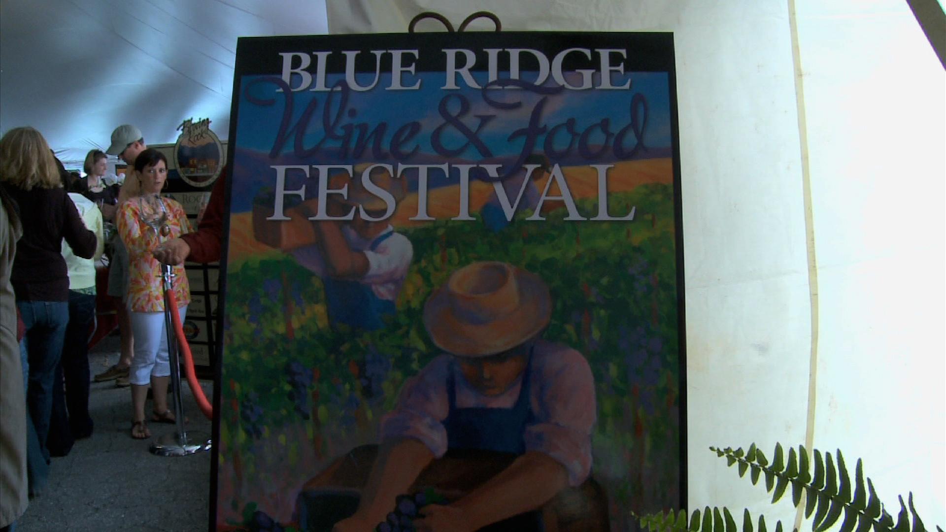 Blue Ridge Wine and Food Festival image