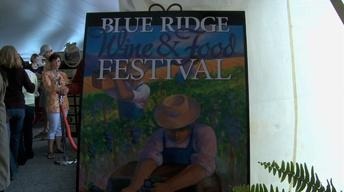 Blue Ridge Wine and Food Festival image