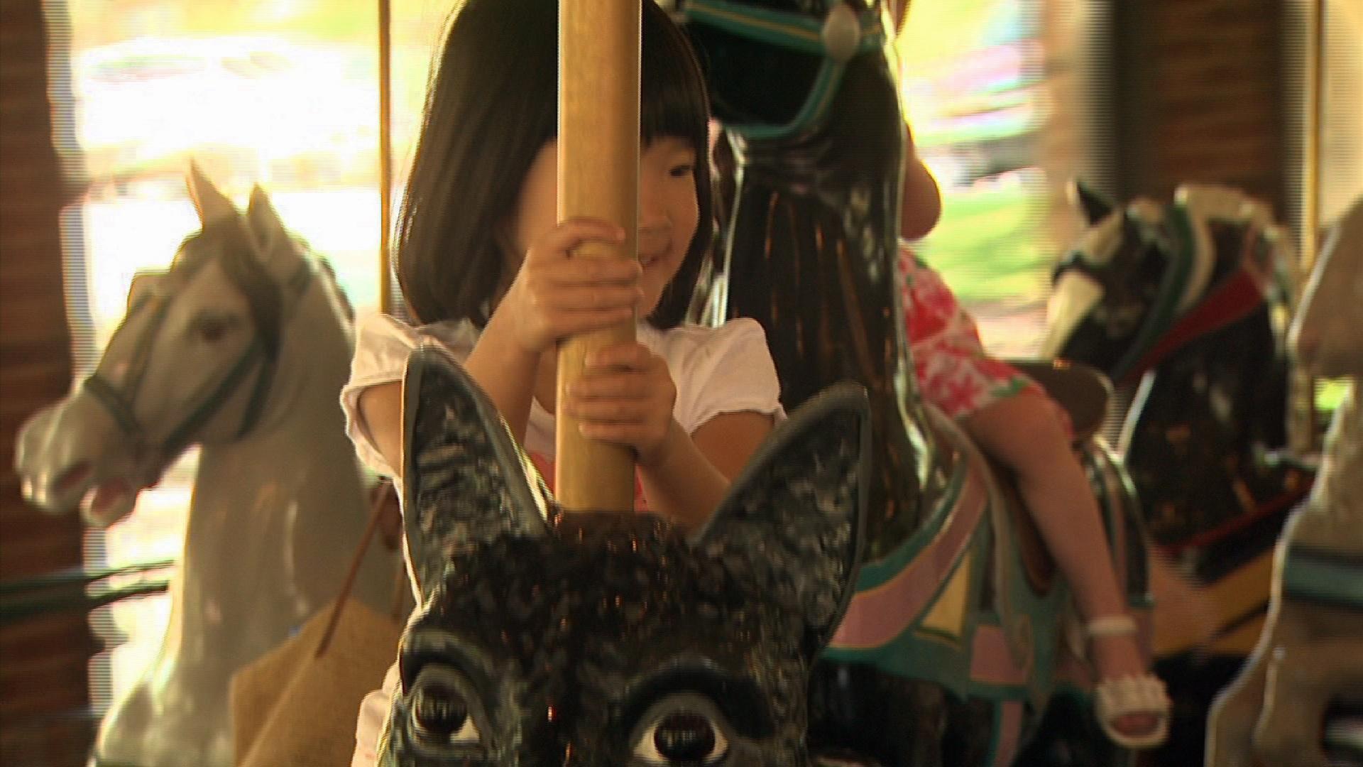 Carousel at Burlington City Park  image