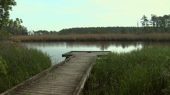 Goose Creek State Park image