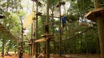 Asheville Adventure Park image