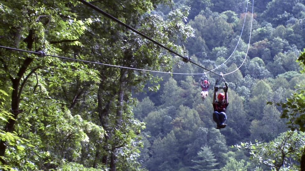 Navitat Canopy Adventures image