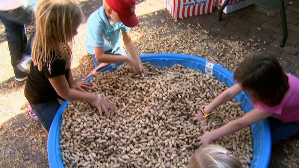 Edenton Peanut Festival image