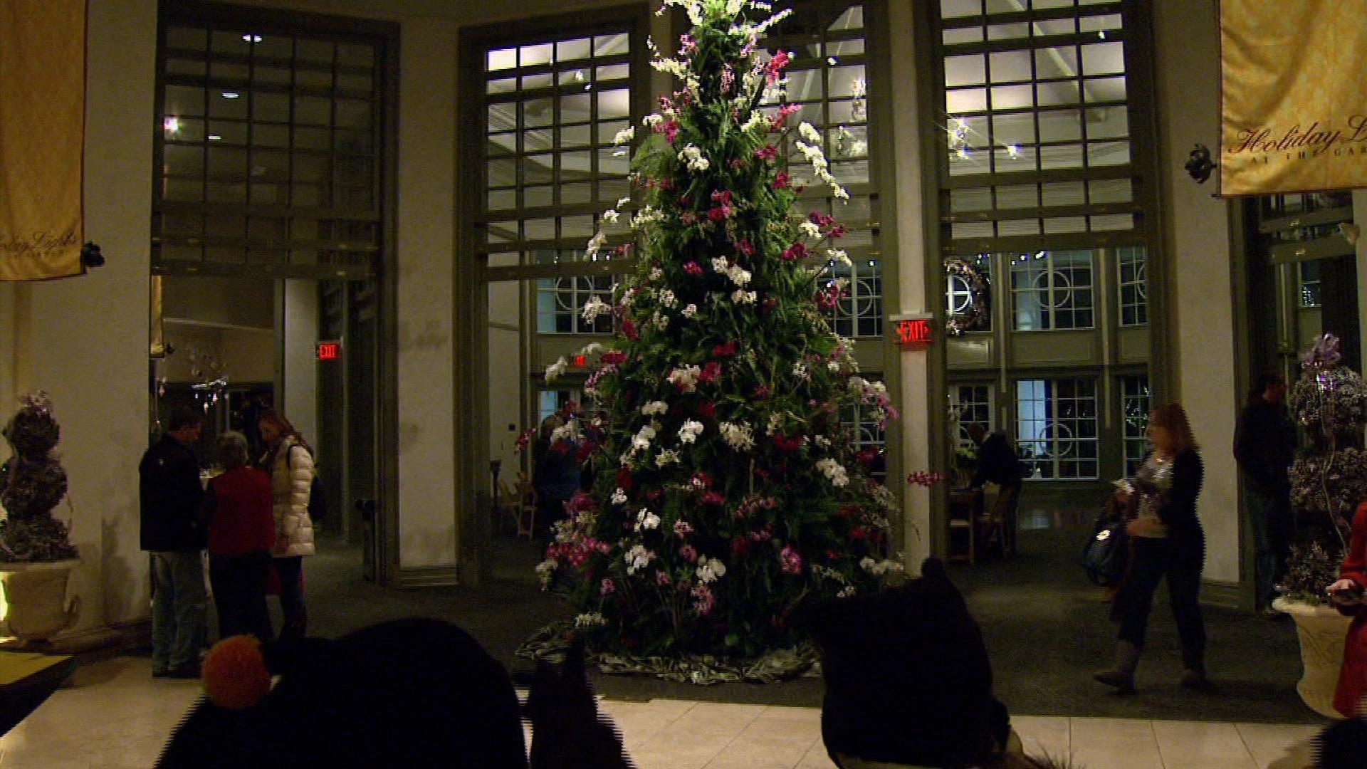 Daniel Stowe Botanical Garden Holiday Light Show image