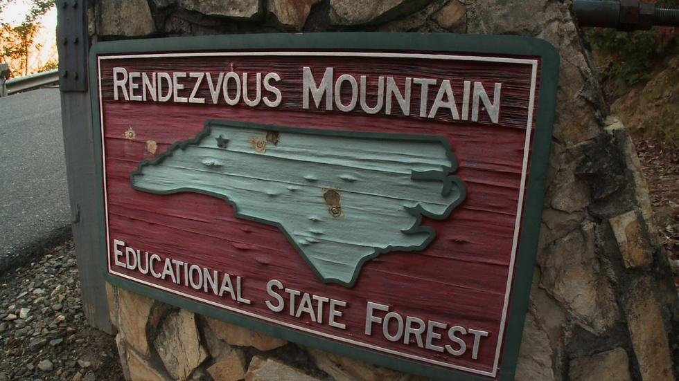 Rendezvous Mountain Educational Forest image