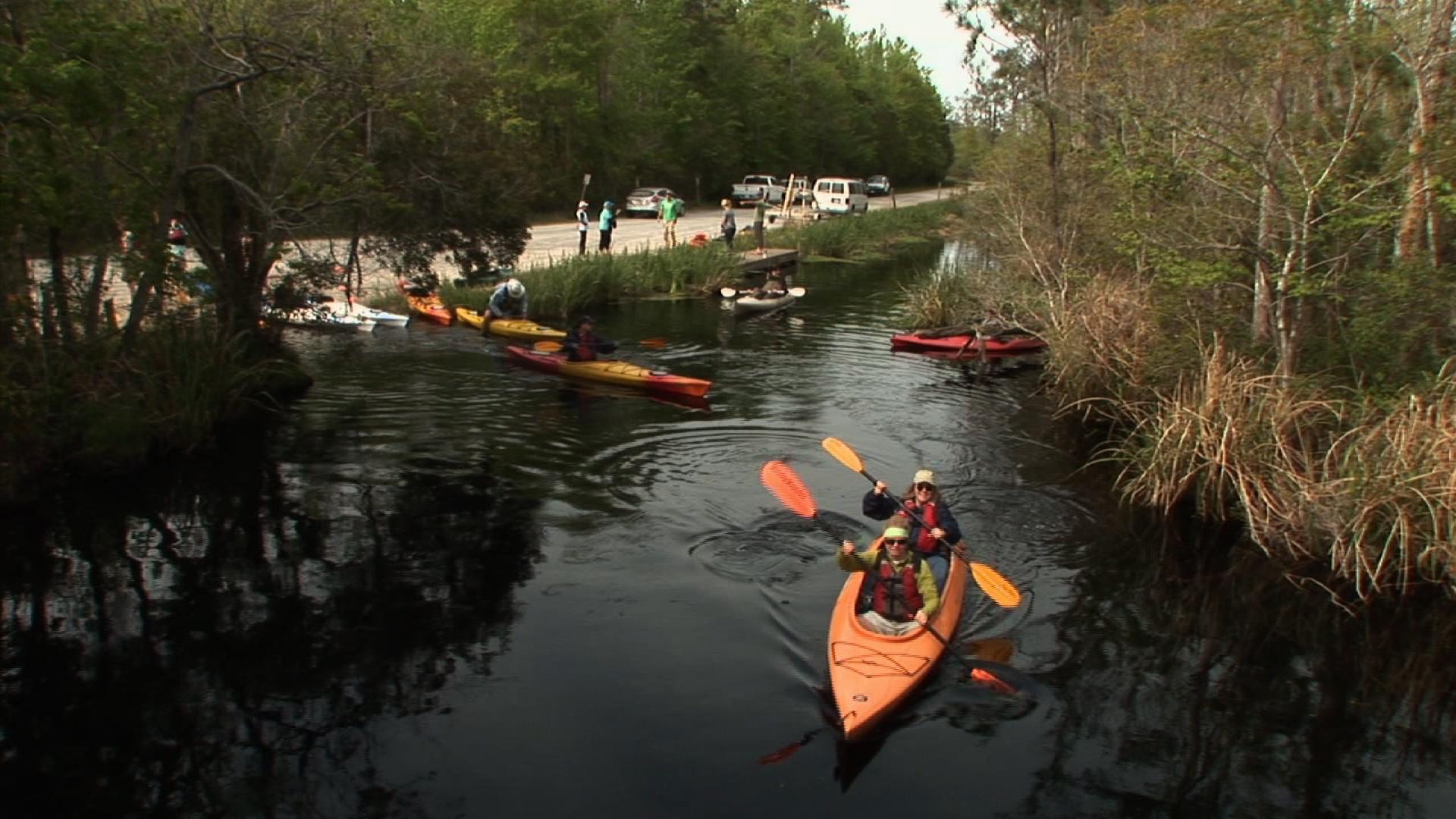 Alligator River Kayaking image