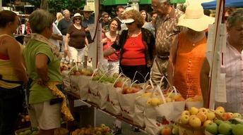 North Carolina Apple Festival image