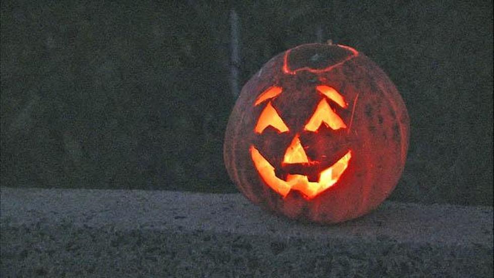 Pumpkin Delights image