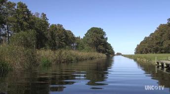 NC Science Now: Saving Lake Mattamuskeet