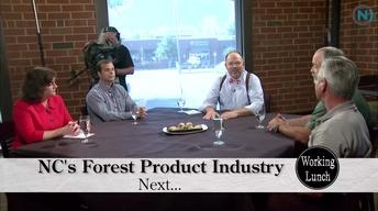 Working Lunch - Forestry Business