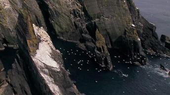 The Irish Trailer