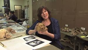 Dr. Linda Spurlock, Cleveland Museum of Natural History