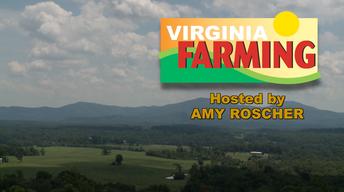 Virginia Farming - Libby Norris Virginia Watershed Scientist