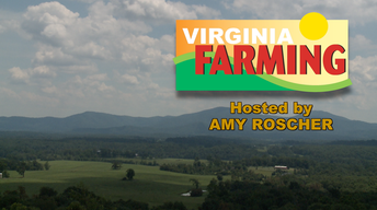 Virginia Farming - Faye Cooper (Valley Conservation Council)
