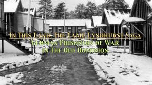 In This Land - The Camp Lyndhurst Saga