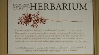 The Penn State Herbarium