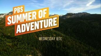 Summer of Adventure : June 14