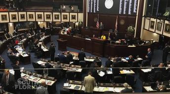 Legislative Support for South Florida Business Community