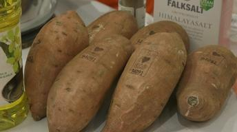 Laser-branded Potatoes, Medical Geology & Veteran Therapy