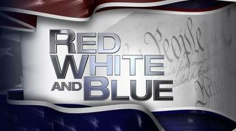 Red White and Blue: State of Harris County
