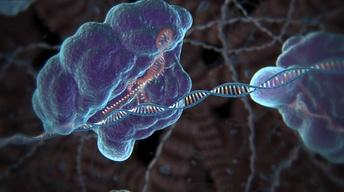 S44: What is CRISPR gene editing?