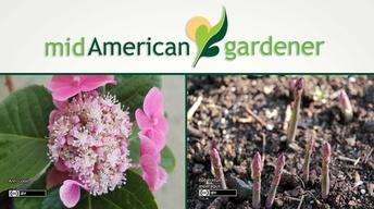 Mid-American Gardener with Dianne Noland May 18, 2017