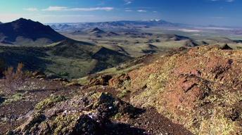 Oregon Desert Trail, Willamette Falls and Pyrosomes