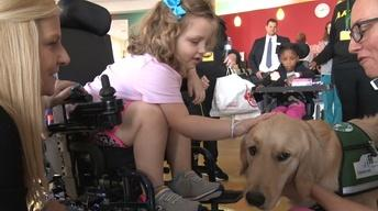 Therapy dog lifts spirits at Children's Hospital