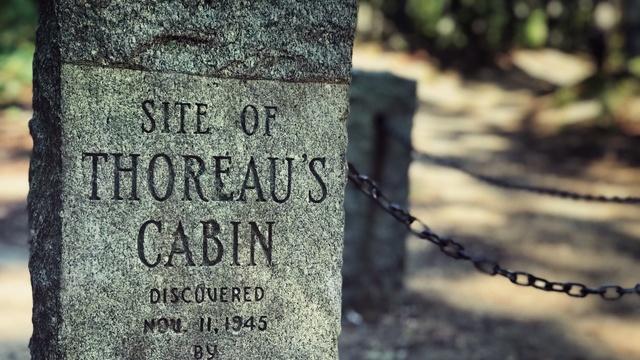 Thoreau At Walden Pond (Preview)