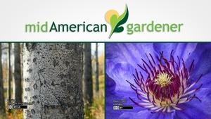 Mid-American Gardener with Dianne Noland September 14, 2017