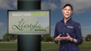 Lifestyle Gardening: Urban Rainwater