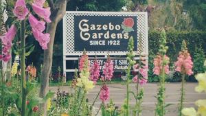 2018 Community Champion of the Year: Gazebo Gardens