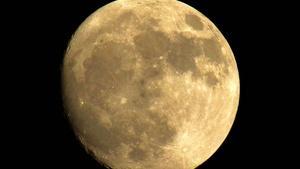 Full Moon by Dale Stewart