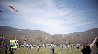Nelson County Kite Festival