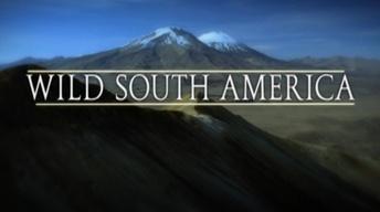 Wild South America Promo