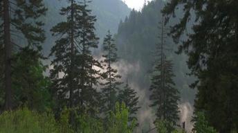 A national park battles pollution
