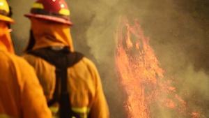 Roundtable: Short-term Rentals, Wildfires, Oceanside Mayor